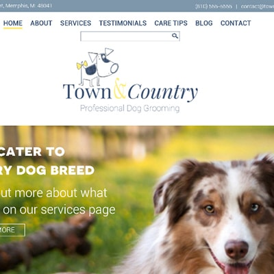 Town and Country Grooming website